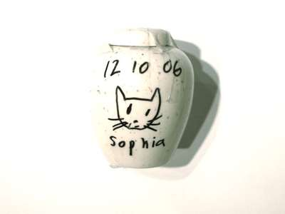 Urn filled with cat's ashes